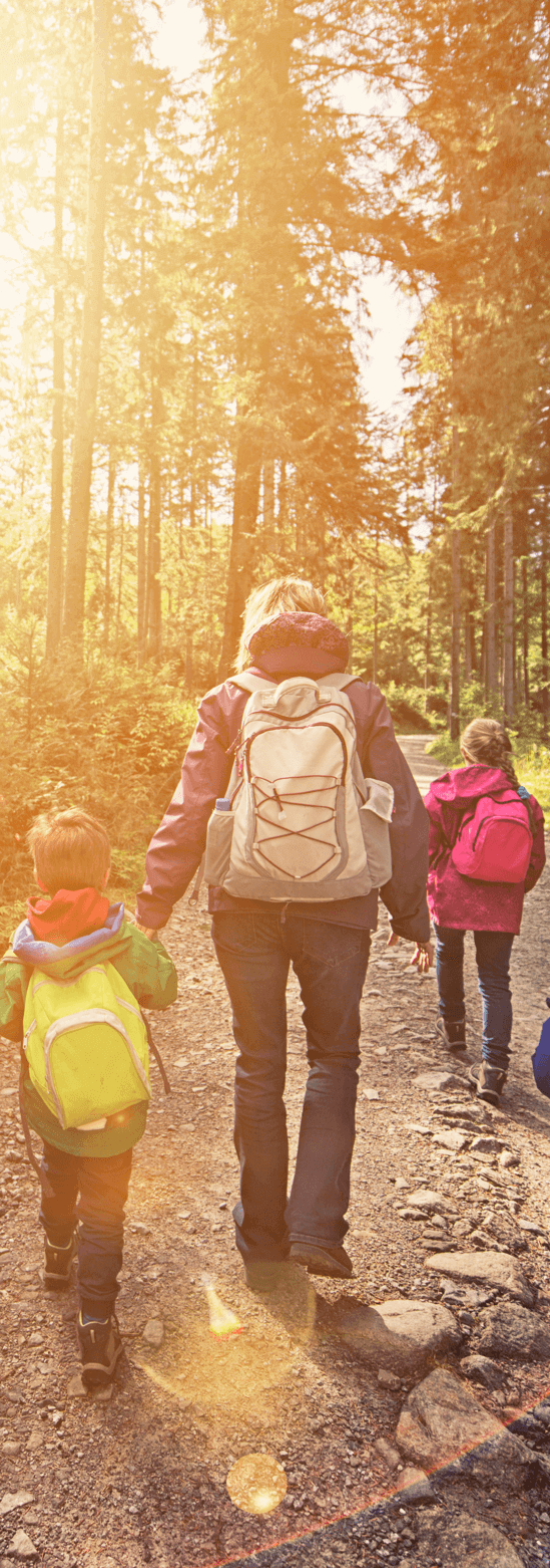 A woman on a casual hike in the woods with her two young children